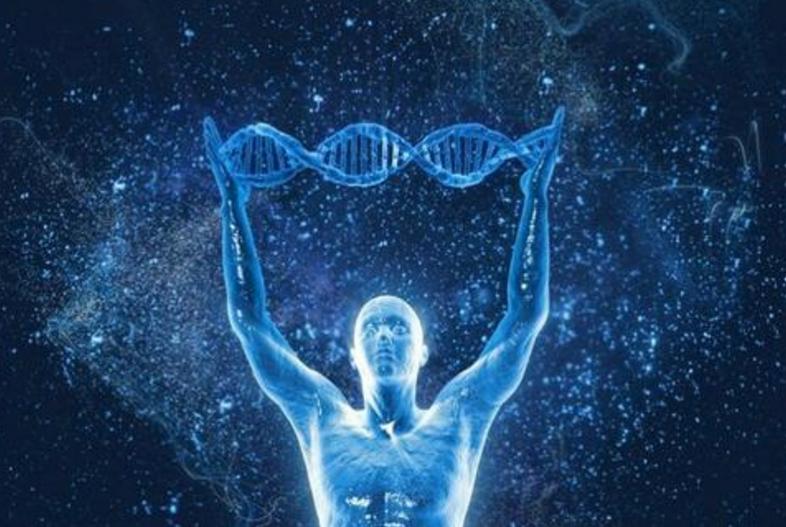 小分子肽的功能与作用,喝肽真的可以修复细胞吗