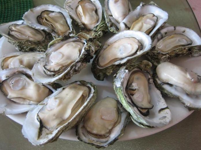 牡蛎肽的作用.png