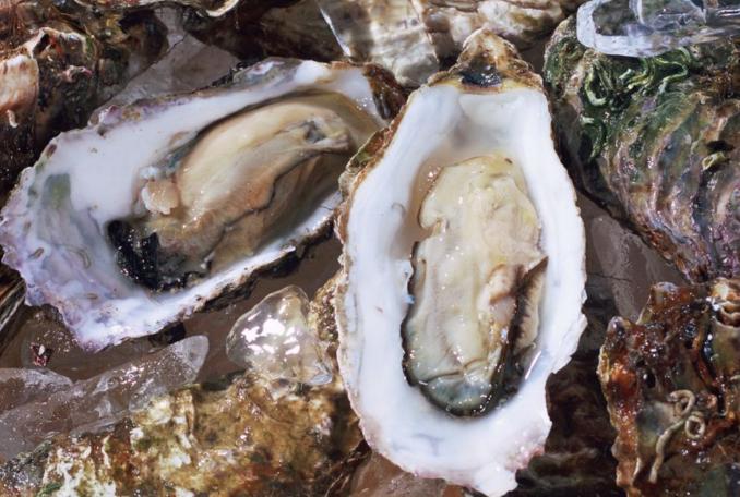 吃牡蛎肽和吃伟哥有什么不同?服用哪一个对身体伤害小?