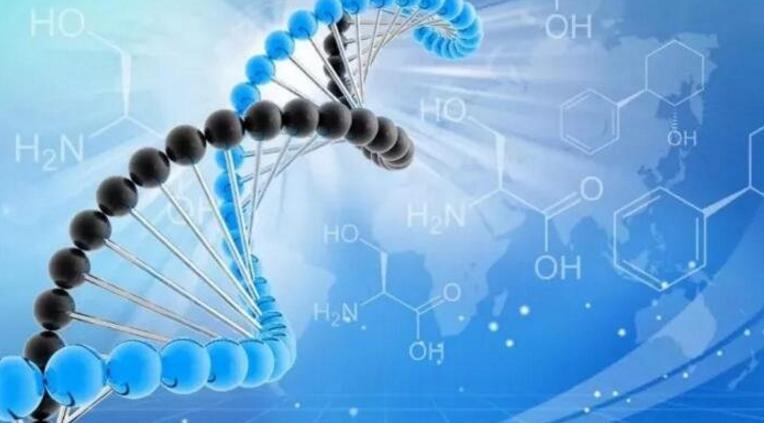 哪些人群急需补充肽?吃什么肽能预防心脑血管疾病
