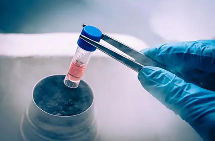 干细胞抗衰老与改善退行性病变,干细胞注射多少钱一般能维持多久