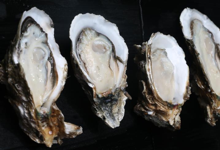 吃牡蛎肽会伤肝吗,事实真实就是牡蛎肽是护肝的!