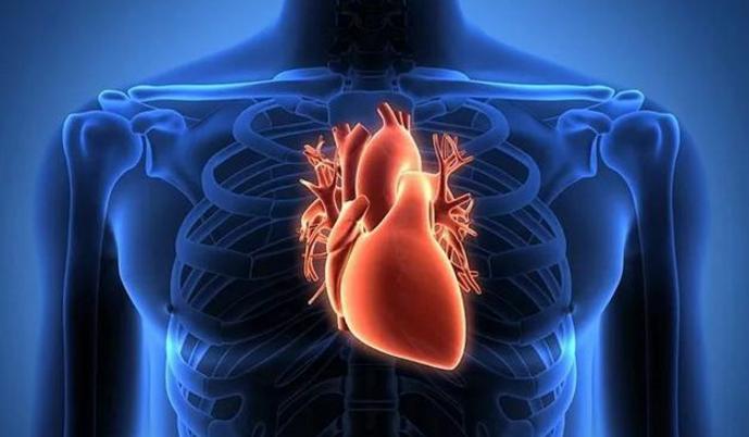 小分子活性肽对高血压患者、三高和心脑血管患者有帮助吗?