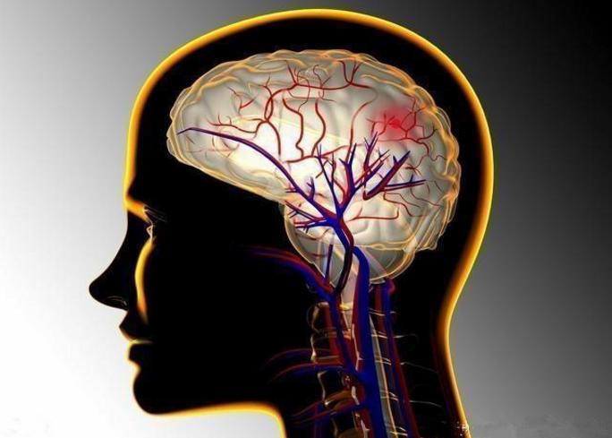 地龙蛋白与输通血管,脑血管不好喝地龙蛋白小分子肽管用吗